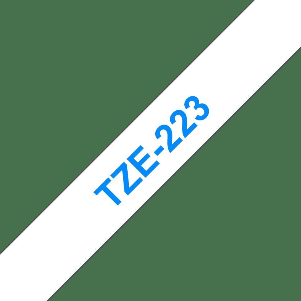 TZe223 3