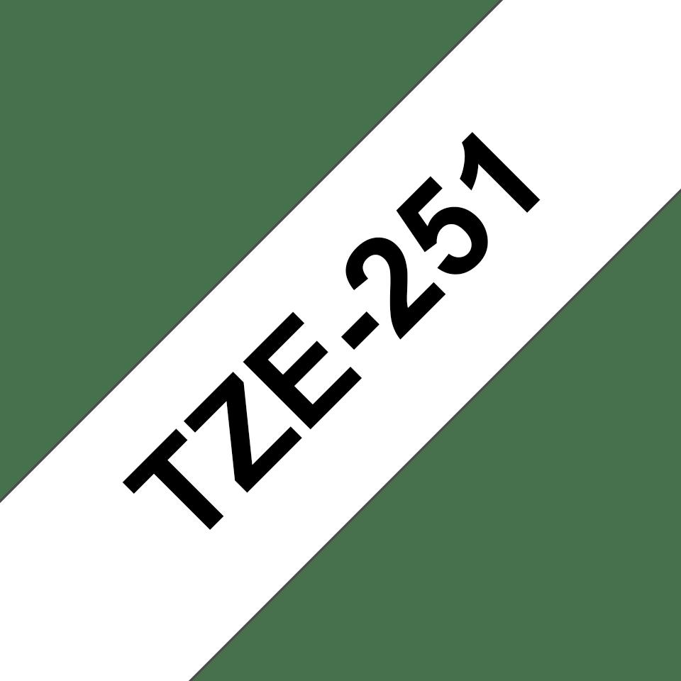 TZe251 3