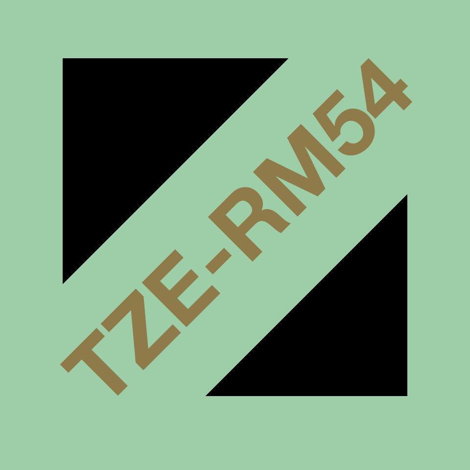 TZeRM54